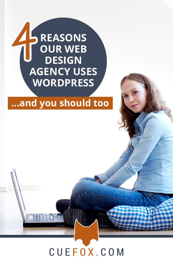 4 Reasons Our Web Design Agency Uses WordPress banner image