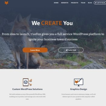 CueFox featured website portfolio image