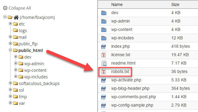 Robots.txt in public_html directory
